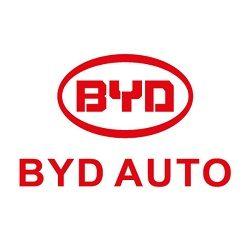 BYD дефлектори